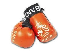 knvb-goves-240x180